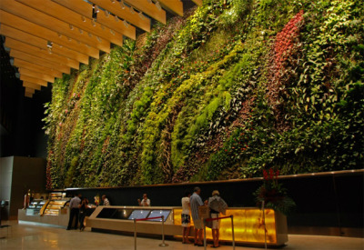 A large-scale vertical garden installation was sighted in Singapore. It is the latest creation of world-renowned French botanist Patrick Blanc, the creator of green walls concept. This magnificent wall is located at Capitaland, 6 Battery Road, Singapore. Don't miss out if you are in the area. (via Vertical Garden by Patrick Blanc Sighted in Singapore | Inspired!)