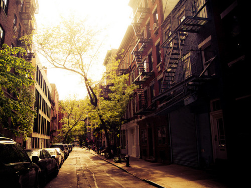 Afternoon Sunlight on a Greenwich Village Street via Vivienne Gucwa