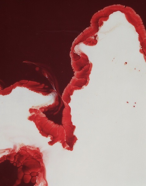 Photographs of blood and milk by Fredrich Fontenoy…waterpaint