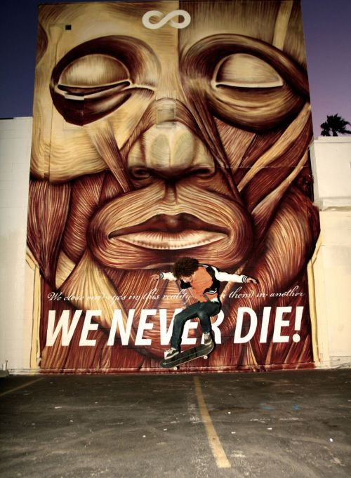 WE NEVER DIE - cyrcle