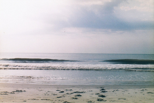 chaunts:  Take Me to the Sea by Wild Kindness on Flickr.