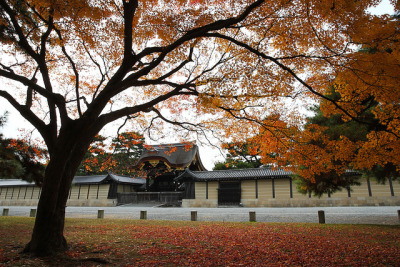 Kyoto Palace Garden by Teruhide Tomori on Flickr.
