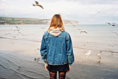 eliego:  Seagulls by amalia-paraskeva on Flickr.