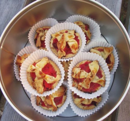 Pretty little Plum and Apple Pies