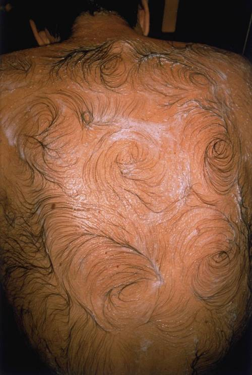Mona Hatoum - Van Gogh's Back, 1995  Hatoum frequently includes photographic elements in her work. In the 1980s she produced a number of video and performance pieces. Several of her major installation and performance works involved her own hair, used to register pain and vulnerability  Tate