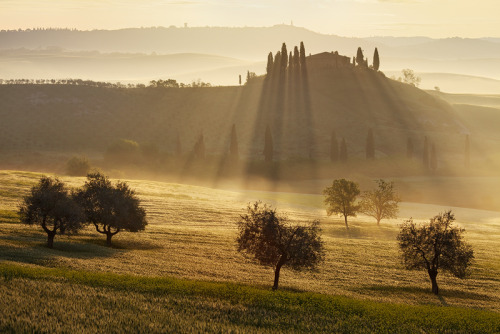 theworldwelivein:  Power Of Light | Val D'Orcia, Tuscany, Italy© Martin Rak Photography