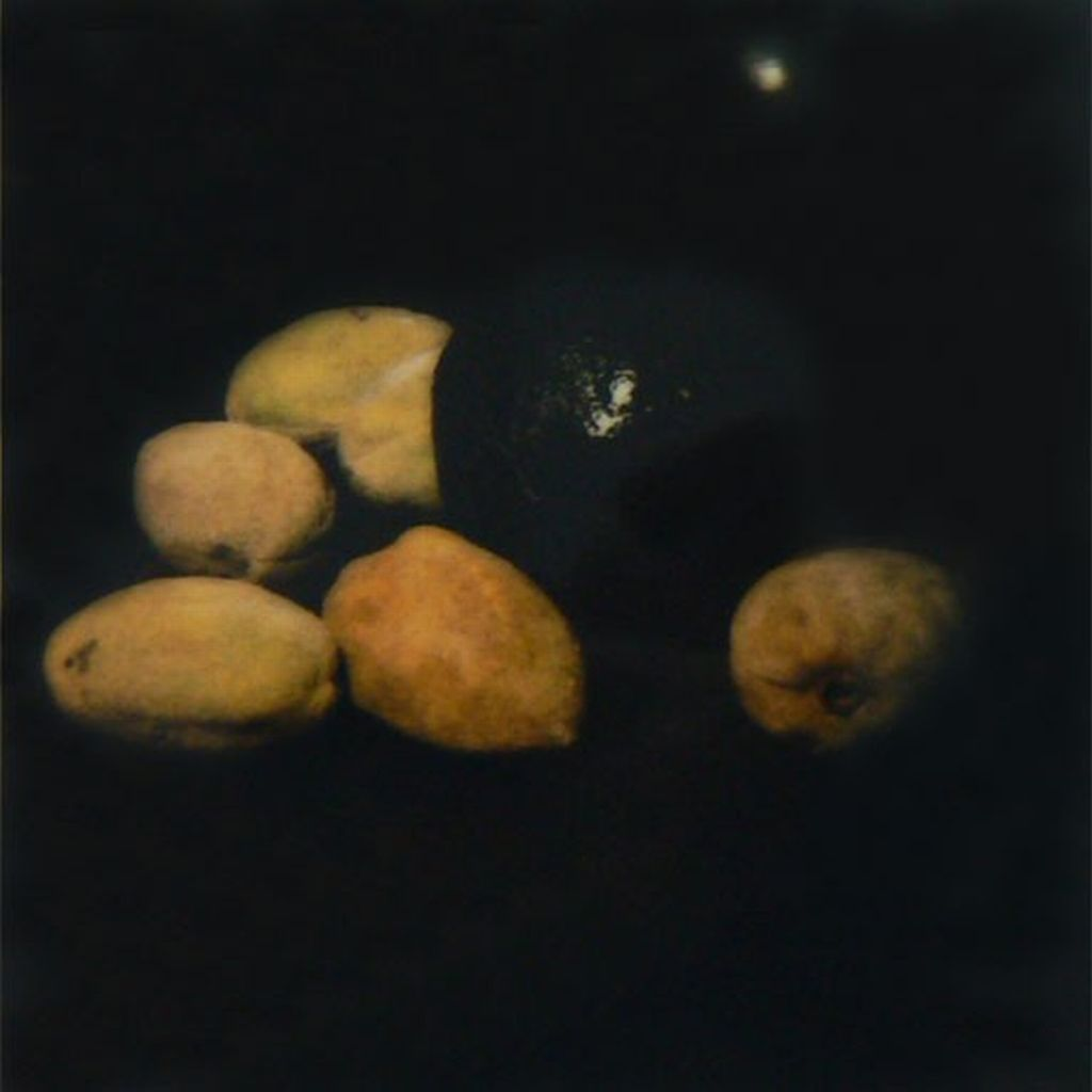 "Donald Sultan (American, born 1951) These small, painterly photographs are preparatory studies for Sultan's much larger still lifes, 8-foot-square compositions against tar black backgrounds which he has described as ""heavy structure, holding fragile meaning."" Unlike the paintings, which are firmly abstract and undeniably contemporary, the photographs seem to emerge more directly from the tradition of 17th century Dutch and Spanish still life painting.                              via                                Donald Sultan  Title: 2 Pears, A Lemon and an Egg Year: 1993 via"