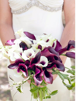 Dreamy calla lily colors - I love the mix of black cherry lilies and white with purple hearts. Calla lilies are also easy to buy wholesale, and simple to arrange, if you're planning to DIY your flowers.