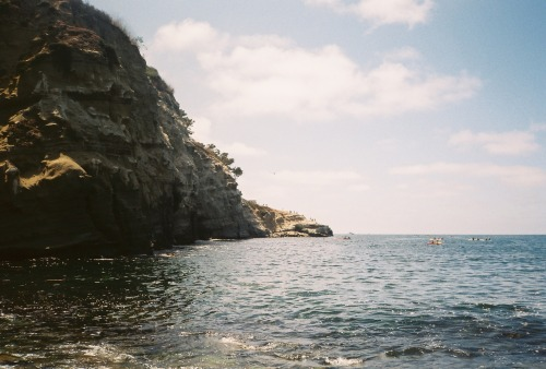 The Sea Caves of La Jolla, CA camera:  Minolta Weathermatic Dual 35film:  expired Fuji Superia 200