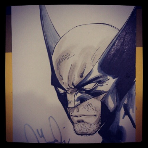 davidyardin:  Wolverine (Taken with Instagram)