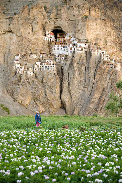 visitheworld:  Phugtal Monastery in Ladakh, northern India (by » Anne).