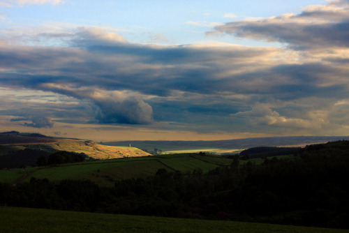 Bradfield Dale on Flickr. A shot from the other week, looking across Bradfield Dale. The tower caught in the sun is a folly built just above Dale Dike reservoir which fills the valley below it.