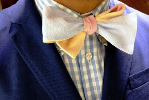 "Gant shirt - Dolbeau ""Go to Hell"" Bowtie - Carven jacket"