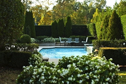 thefoodogatemyhomework:  Simply lovely hedge garden and pool.
