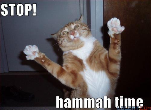 Cats are chillin cos 1) They do the most epic poses in lolcats 2) they only require your attention when they want food, unlike dogs 3) if you acumilate enough, you can become a crazy cat lady 4) you can tell them whteva annoying problems you have and they don't care 5) their kittens are the cutest. 6) they can walk on fences and fit through any gap (providing it's not a fat cat) 7) they're pretty much a girl's best friend 🐱