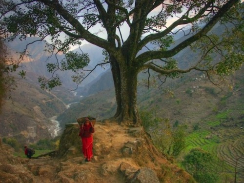 Trek Nepal's Forbidden Valley (via AFAR)