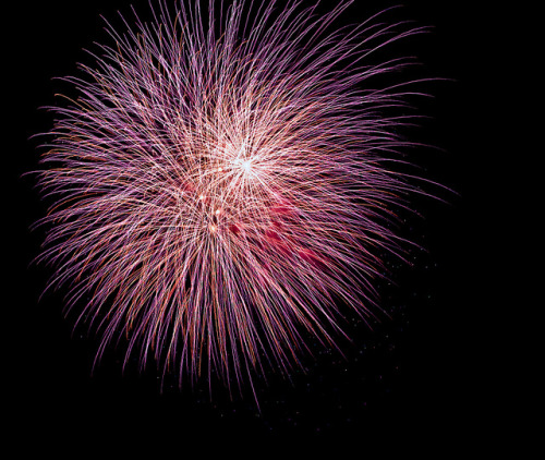 cumence:  Purple Star Fireworks by Oncle Tom on Flickr.