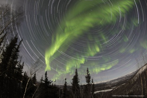 n-a-s-a:  Yukon Aurora with Star Trails  Image Credit & Copyright: Yuichi Takasaka / TWAN