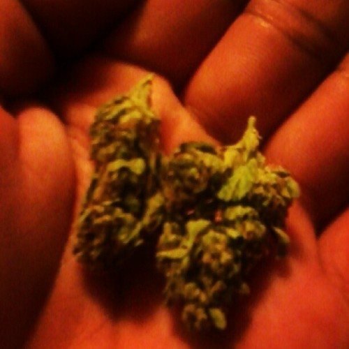 #weed #blazeit? (Taken with Instagram)