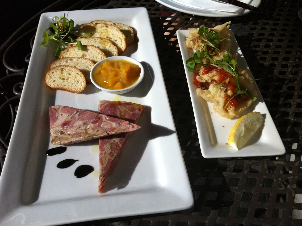platters - fried calamari and duck terrine