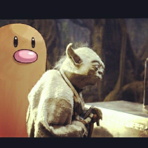 Diglett wat you doin? Yoda ain't got time for you!