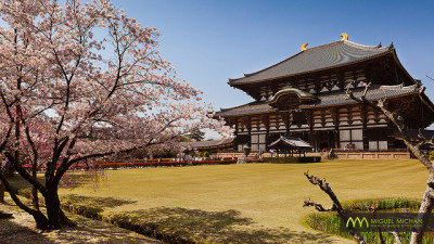 Todai-ji : Nara, Japan / Japón by Lost in Japan, by Miguel Michán on Flickr.