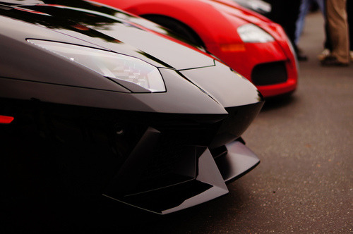 so-obey:  Aventador and Bugatti.