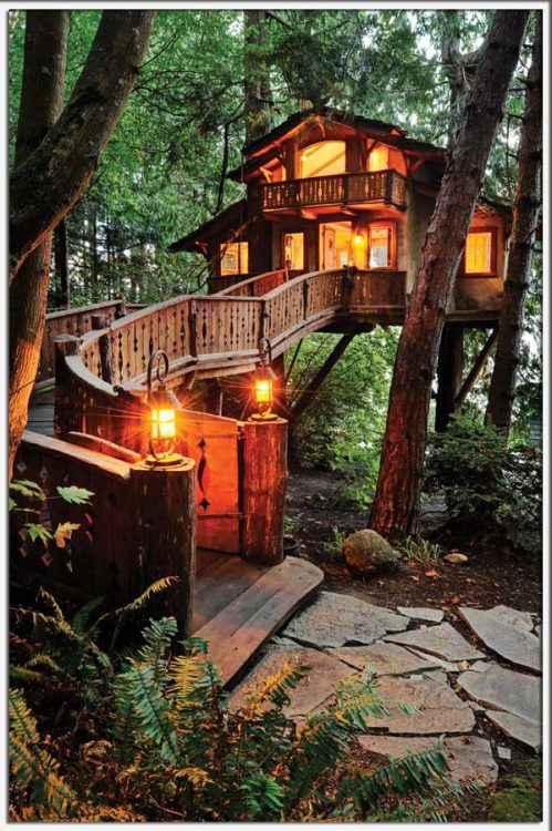 Pleeeease can I have a tree house like this