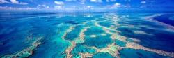 Mark Gray's photo of Hardy Reef, on the Great Barrier Reef, Queensland