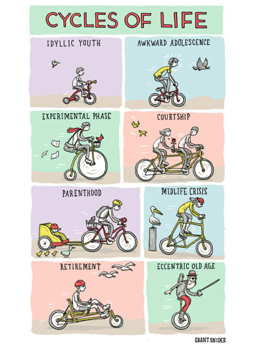 Cycles of life by Grant Snider