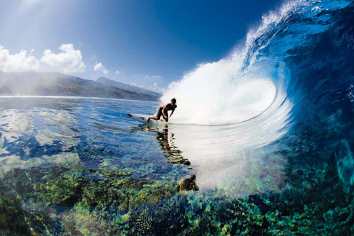 surfing-the-deep-blue:  Love surfing blogs? CLICK HERE!