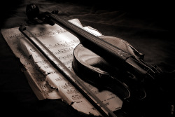 art-and-dream:  Black and whit photography Archetypes. The old violin. by YarM