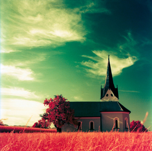 lomographicsociety:  Lomography Tag of the Day - filter