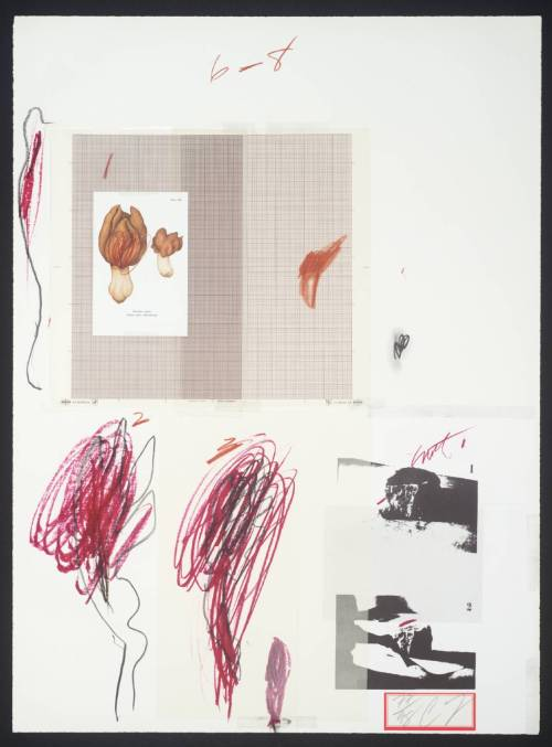 artpedia:  Cy Twombly - No. IX, 1974. Lithograph and mixed media on paper