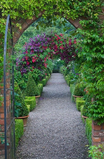 Arch with Rosa 'Crimson Showers' and Clematis 'Etoile Violette' by Clive Nichols.