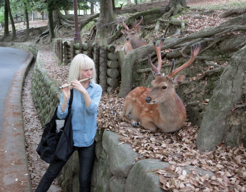 "i like how the deer in the back is like ""Why the fuck aint she playin me no song?"""