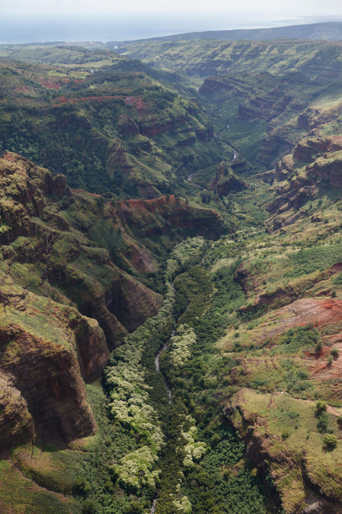 deadscope:  Kauai by Cargo Cult