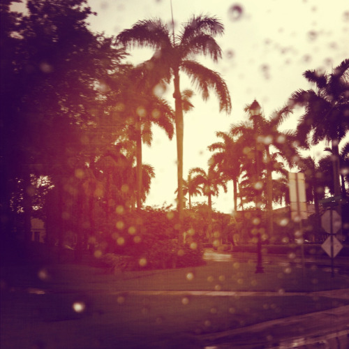 Tropical rain is the best rain in the world….