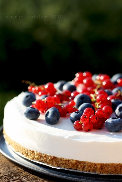 classymissmolassy:  Cheesecake with Yogurt & Berries Recipe. (in Romanian, translator at top of page)