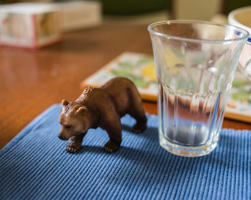 Bear with glass on Flickr.