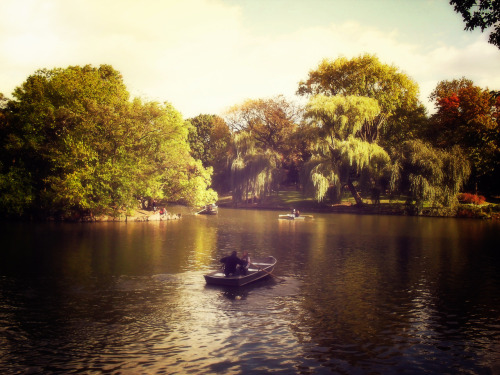 "Row boats and willow trees at The Lake in Central Park. New York City.  When the summer sun has drifted low into the sky after every bit of earth has been soaked in its warm splendor, the trees hang their heads down in mournful remembrance of winter's impending icy touch.  And the willows play a slow and deliberate adagio to accompany the last of summer's lovers on the sweetest sun-kissed wings of the wind.  —-  View this photo larger and on black on my Google Plus page  —-  Buy ""Song of the Willows - The Lake - Central Park - New York City"" Prints here, email me, or ask for help."