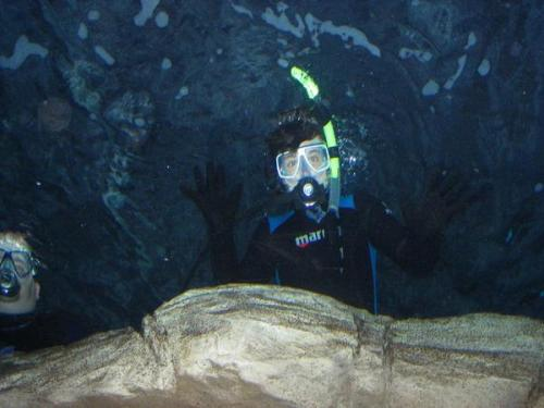 josh-mutherfuckin-hutcherson:  jhutch-jaw:  Josh scuba diving  I really wanna go scuba diving, since like foreveaa  that lucky hoe.