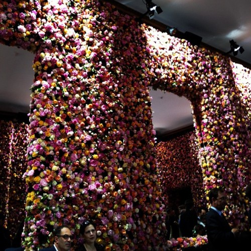 businessoffashion:  Walls completely covered with roses, delphinium, orchids, peonies, mimosa @Dior (Taken with Instagram)
