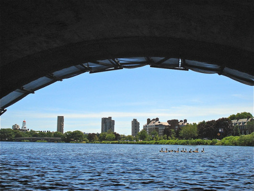 Under the BU Bridge on Flickr. Charles River, MA Last day of June, 2012