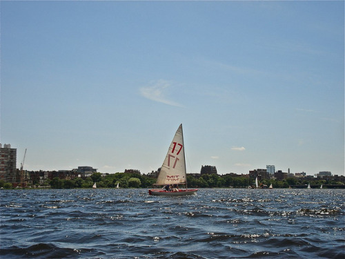 Number 17 on Flickr.Charles River, MA Last Day of June, 2012