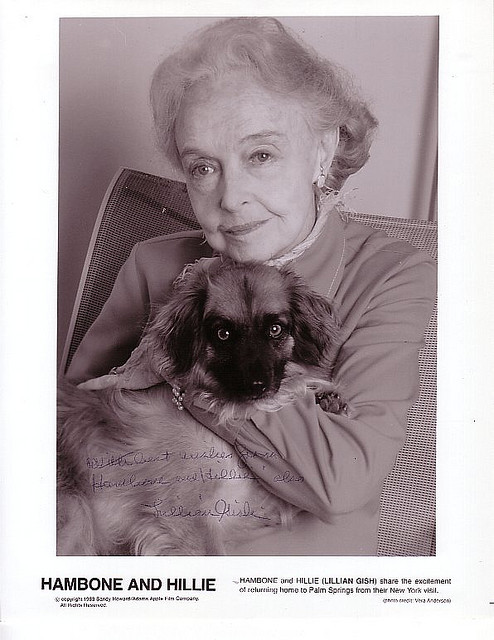 Lillian Gish and Hambone. on Flickr.