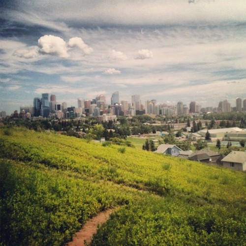 doarteveryday:  #calgary #yyc #skyline (Taken with Instagram)
