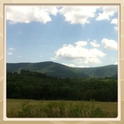 #vermont #scenic #nature #mountains #drive #vacation (Taken with Instagram)