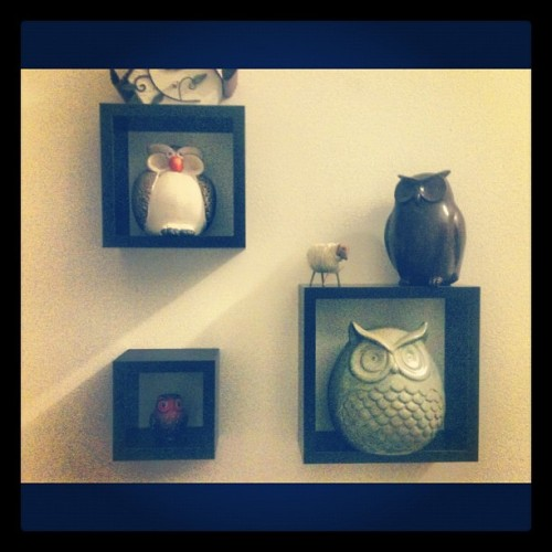 #new #shadow #box #shelves #from #target! #the #greatest #place #ever! #hashtag #overload #much? #yep. (Taken with Instagram)
