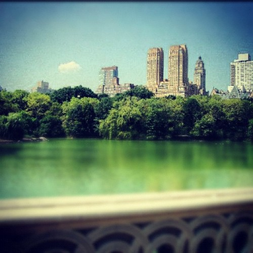 Central Park, New York City (Taken with Instagram)